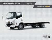 Camiones NQR 919