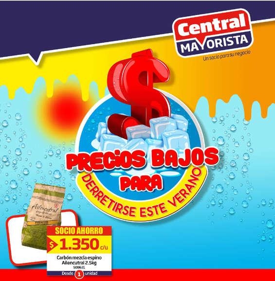 Ofertas de Central Mayorista, precios para derretirse este verano