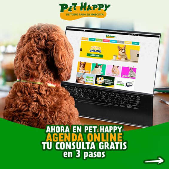Ofertas de Pet Happy, Agenda online